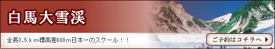 hakuba-daisetsu.fw_.fw