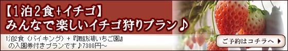 shirakaba-ichigo.fw