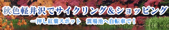 karuizawa-mini